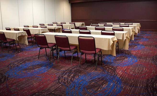 Charleston Civic Center Custom Carpet